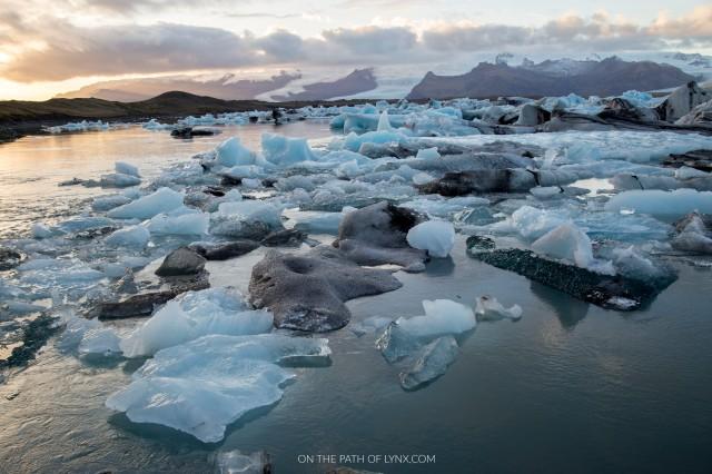 JOKURSARLON GLACIER LAGOON ICEBARGS ICELAND ON THE PATH OF LYNX