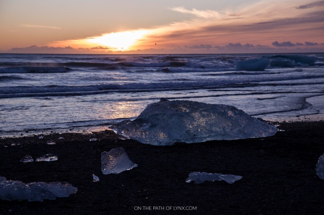 diamond beach iceland on the path of lynx com