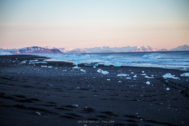 diamond black beach Iceland on the path of lynx