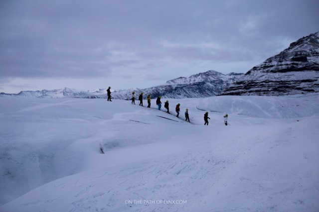 glacier trekking Iceland Svinafellsjokull on the path of lynx