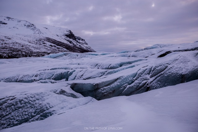 Svinafellsjokull trakking glacier Iceland on the path of lynx